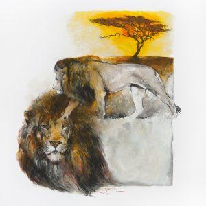 LionProwlerVeldt_IMG_4083